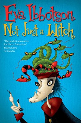 Book cover for Not Just a Witch